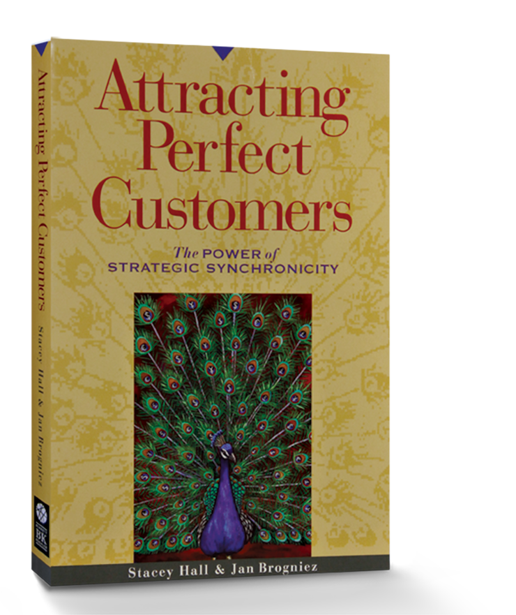 Attracting Perfect Customers – #3146