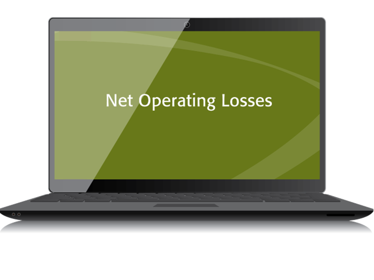 Net Operating Losses Textbook (2015) – Electronic PDF Version - #3437E