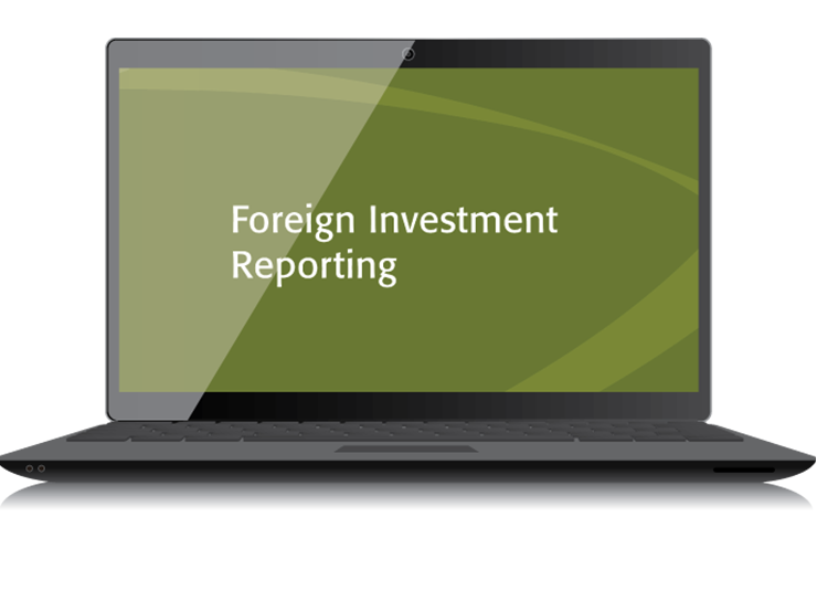 Foreign Investment Reporting Textbook (2015) – Electronic PDF Version - #4433E