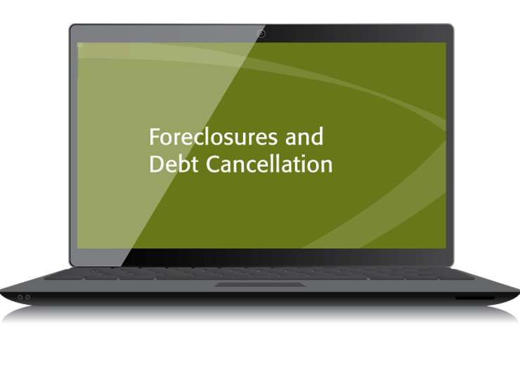 Foreclosures and Debt Cancellation Textbook (2015) - Electronic PDF Version - #4516E