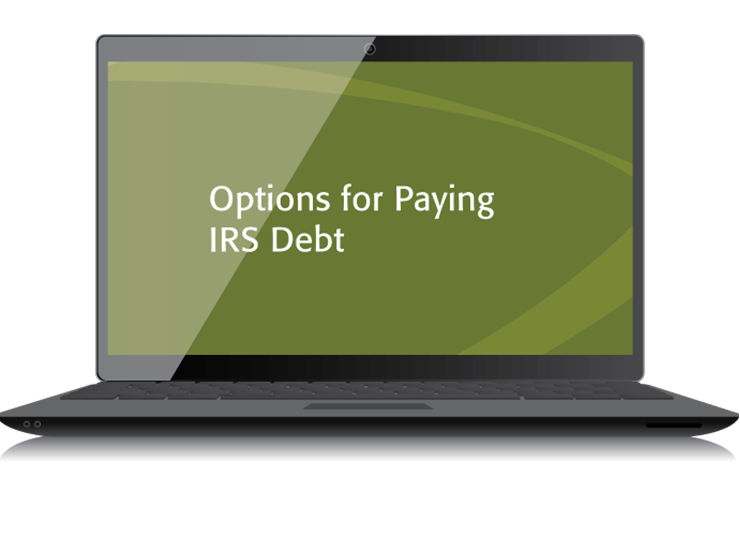 Options for Paying IRS Debt Textbook (2015) – Electronic PDF Version - #4517E