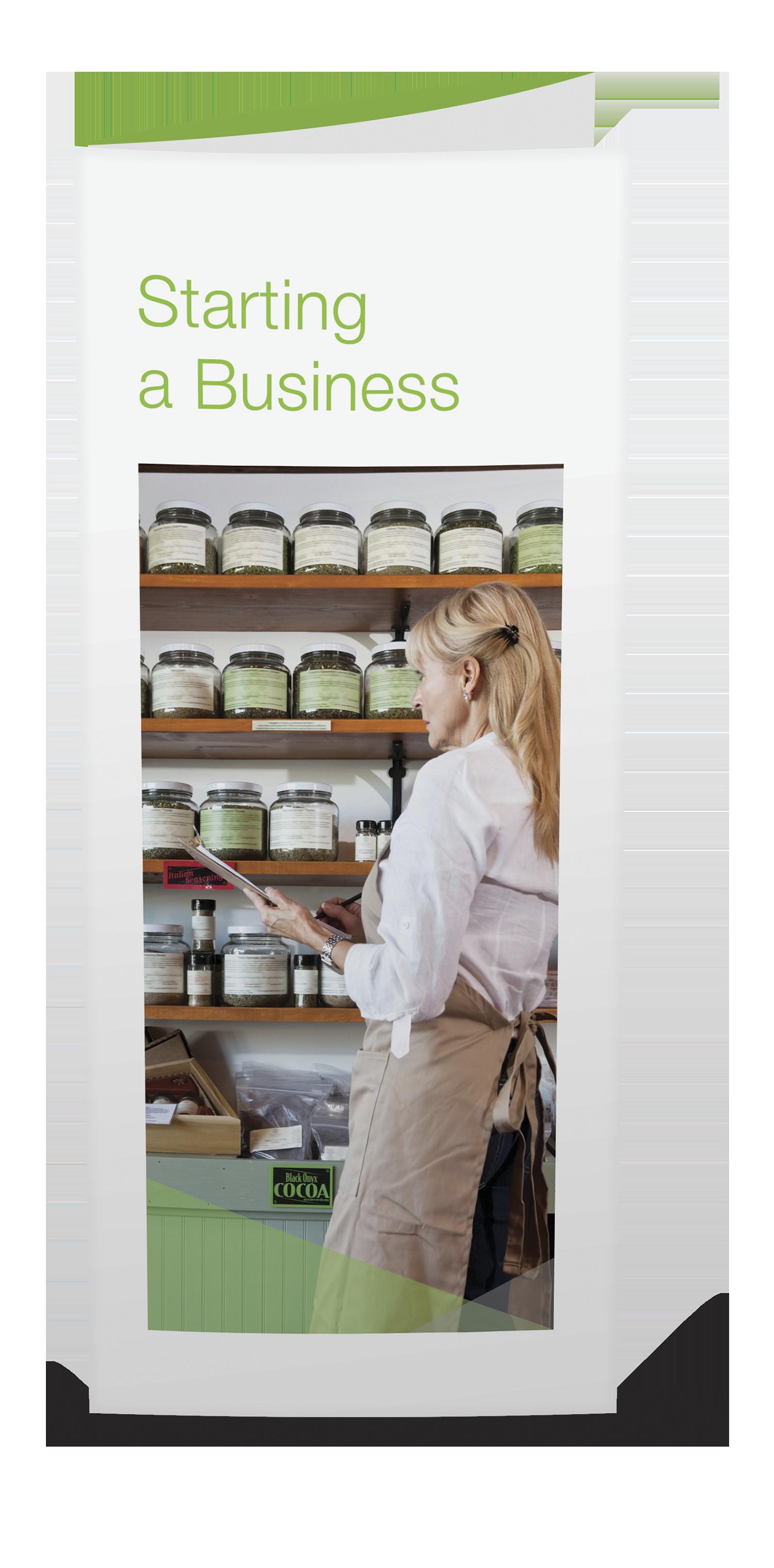 Starting a Business Brochures - 25/pkg - #843