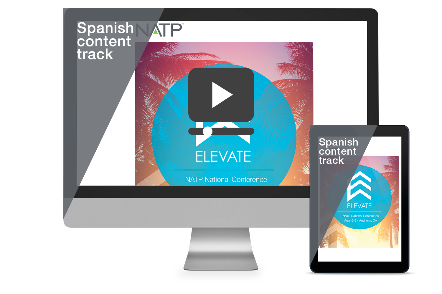 2018 National Conference - Spanish Content Track 12-month Streamed Recordings Bundle - #RE3808S